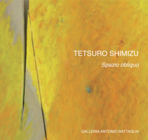 Copertina catalogo Tetsuro Shimizu Spazio obliquo